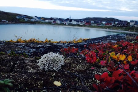 Arctic Sea Activitities in Bugøynes - Bugøynes - Hus