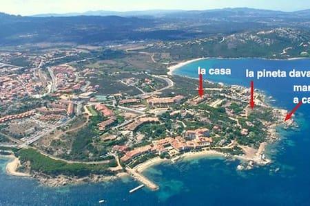 Palau - loc Porto Faro - La Gritta - Palau