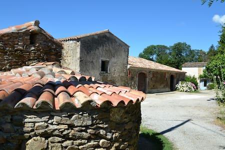 Domaine de Massillargues - Saissac