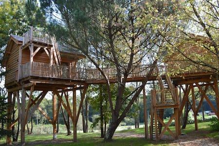 Cabane dans les arbres Palombière - Le Nizan - Puumaja