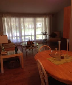 Wi-fi, near Hospitals, Downtown, Washington Park! - Springfield