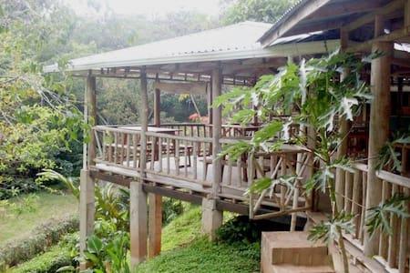 Albergue Montaña Verde - Rivas - Guesthouse