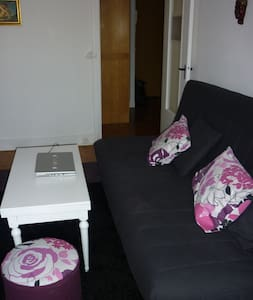 Appartement T2 proche paris - Sceaux - Flat