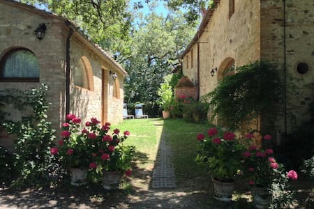 Charming apartments near Siena