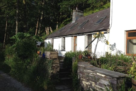 Mountain cottage above Llanberis - Caernarfon - Casa