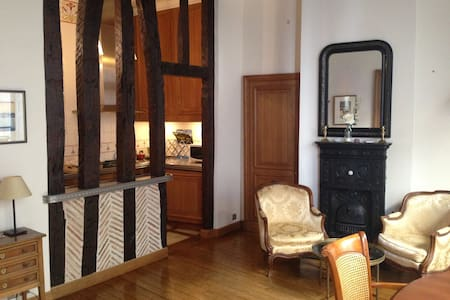 Spacious apt in St Germain des Près