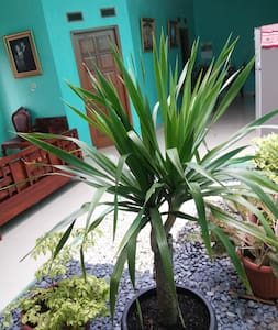 A room for rest and relax near Jakarta - Bed & Breakfast