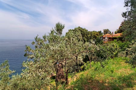 Villa Elitsa in mt. Pelion Greece next to Zagora - Villa