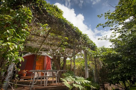 Secret Garden Yurt Over the Bay - 卡内奥黑(Kaneohe)