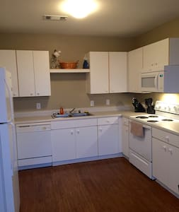 Clean and Spacious Private Apartment - Houston
