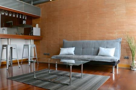 El Duplex: Moderno y acoge dor - Providencia - Leilighet