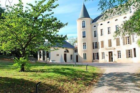 Dépendances château 15 personnes - Salles-sur-l'Hers - Istana