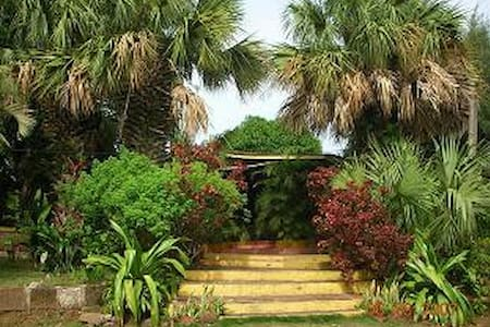 STUDIO 4 RENT-CAMINO SANTO DOMINGO - Managua