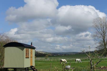 Goodwood, Your own Shepherd's Hut - Goodwood