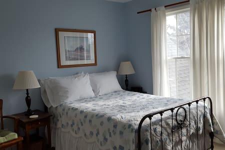 UM Professor's Large, Quiet, Air Conditioned Home - Ann Arbor - Bed & Breakfast