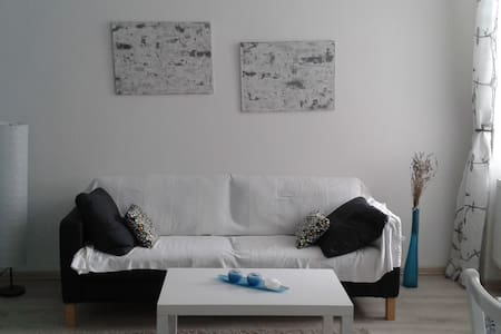 1room flat in the city centrum - Appartement