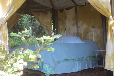 The Redwood Room Gazebo - Tipi