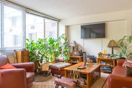 Master bedroom in duplex near all. - Nova York