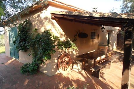 podere della vigna - Magliano In Toscana