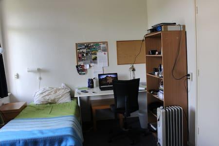 Cozy Room+Balcony in nice apartment