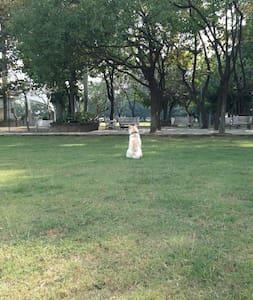 Soulangh Cultural Park Tainan host - Wohnung