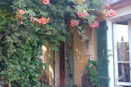 ' Mazet Dethier ' Provence Charm - Saint-Rémy-de-Provence - House