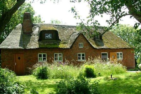Ferienhaus Linde - Hus