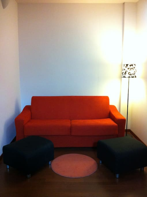 This is the double sofa-bed in the living room (here in sofa-mode).