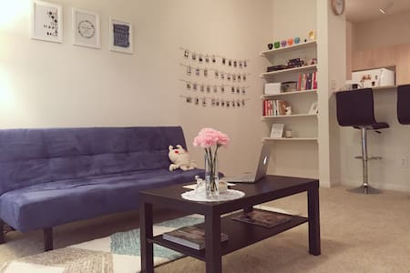 D.flower studio is a clean, cozy and spacious space located in the heart of Addison. A great neighborhood with fine dining restaurants and bars to explore. Just set down your bags and reach out into the neighborhood; it's an amazing area.