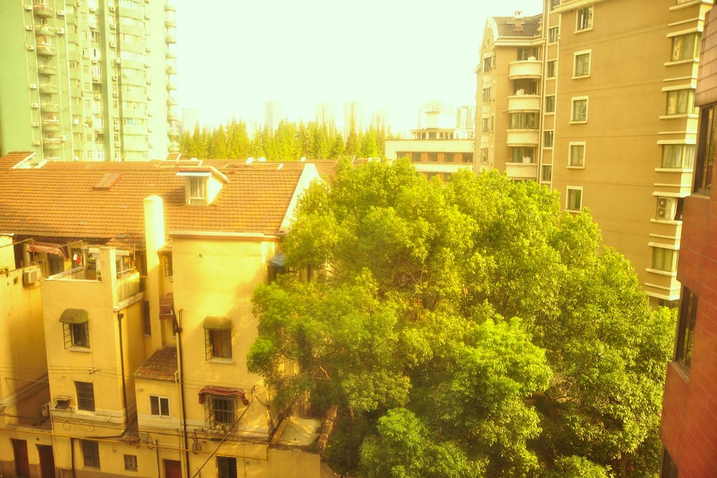 The view from your window-typical shanghai community