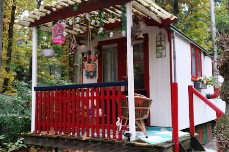 Nature and silence in gipsy wagon - Chalet