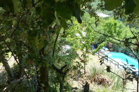 Gîte Lospelos le Parpailloux Gard - Apartment