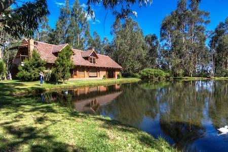 FINCA PALUMBO CAYAMBE - House