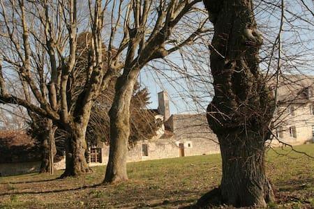 Ferme ancienne (15ème/16ème siècle) - Chezelles - House