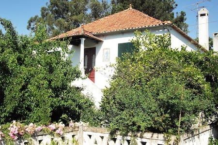Quinta de S. José, Charming Country House - Vila Nova de Oliveirinha - Hus