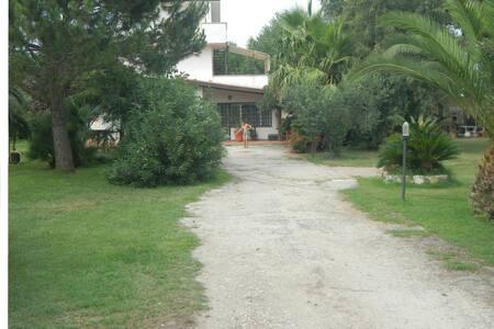 SAN FELICE CIRCEO in villa - House