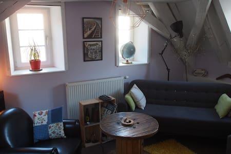 Chambre cosy Colmar - Colmar - Daire