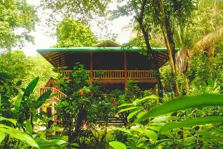 La Casa Hoy - Haus