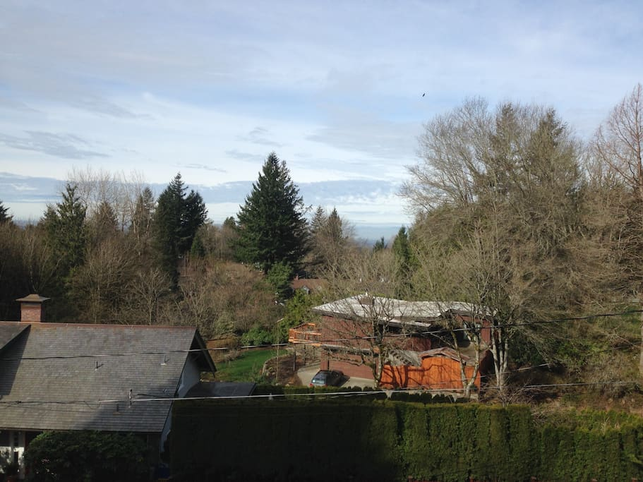 Daytime view from Living Room.