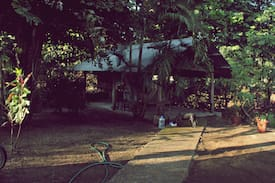Picture of The Jaco Surf Club Jungle-house