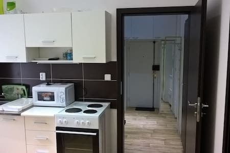 Full equipped apartment in a CITY CENTER of Brno - Apartment