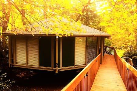 The Birdhouse is nestled on Sugar Mountain, NC - Sugar Mountain - Casa