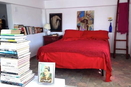 A modern-unique loft - Caracas - Loft