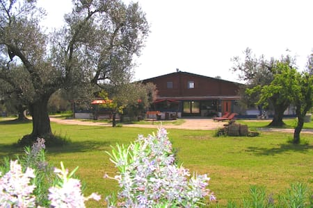 Relax in campagna - Canino - Bungalow