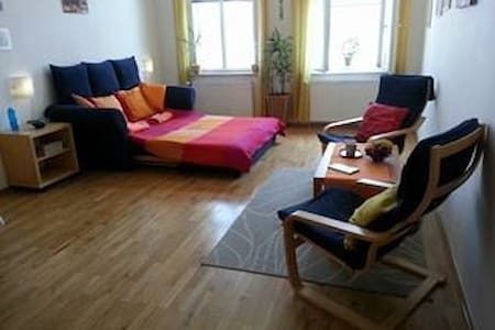 Spacious and bright flat in center - Flat