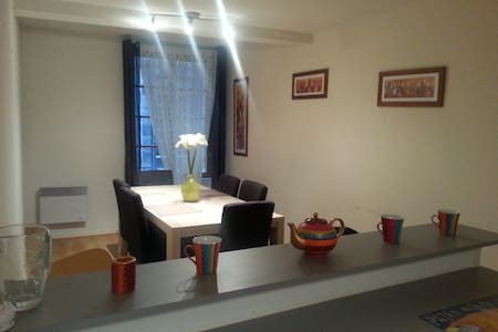 Spacious apartement in the historic city centre - Clermont-Ferrand