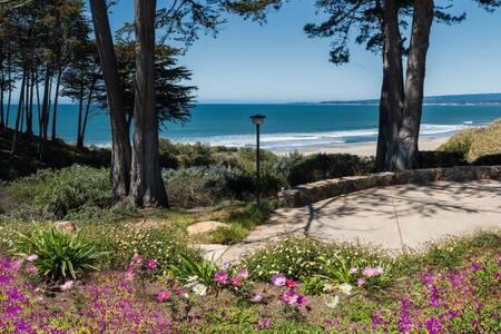 Seascape Ocean View Condo