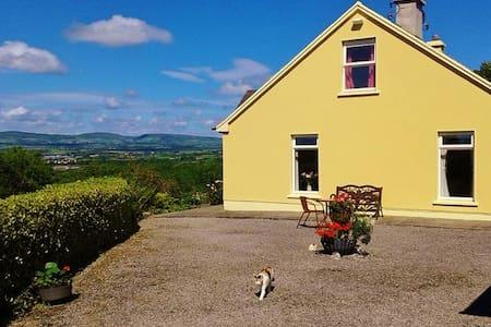 Scotia's Glen - Tralee