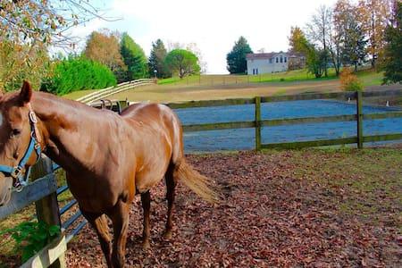 Private Horse Farm retreat - Brandywine - House