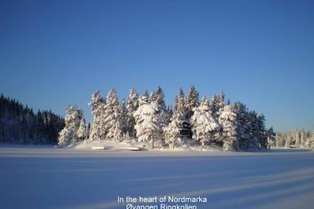 I hjertet av Nordmarka (Ringerike) - Hønefoss - Casa de campo